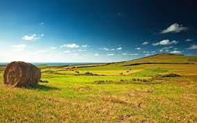 Norme privind vânzarea și cumpărarea terenurilor agricole