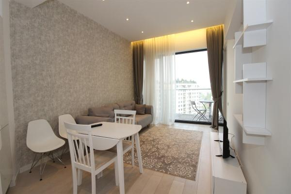 To rent German Expat looking for a modern 1 bed apartment in the central area